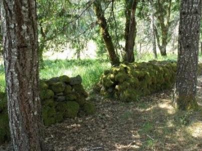 zane_grey_cabin_rock_wall_1_-_galice_oregon